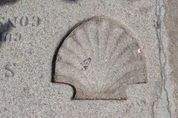 Jacobsschelp, het symbool van Santiago de Compastella